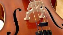 Featured Artistes - cello